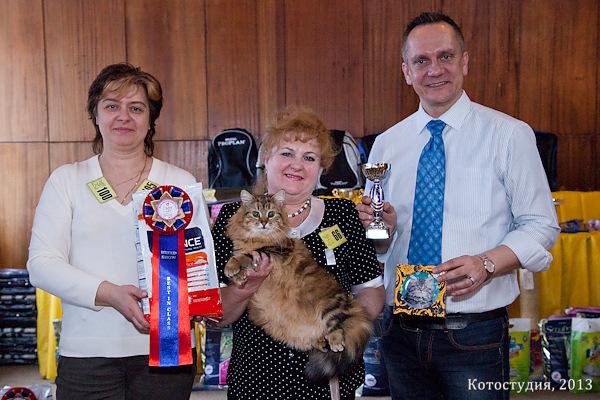 Пелагея - Лучшая кошка монопородного шоу